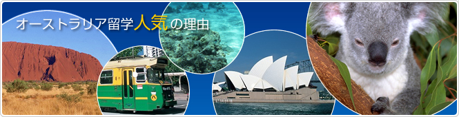 オーストラリア留学人気の理由